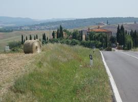 Tuscany near Tuscia d'Arte